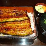 【浜松旅行】浜名湖のウナギを堪能し、中田島砂丘で自然と親しみ、浜松城で歴史を感じる
