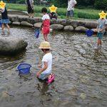 子育て世代のひとり税理士の夏休みの取り方
