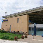 新江ノ島水族館でイルカショーだけを見て楽しむ
